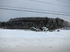Snow017