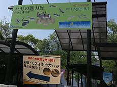 2013gori01