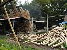 2008sagano_21