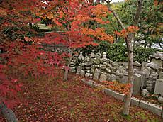 2008sagano_9