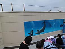 Okinawa2013nov_33