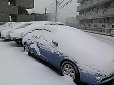 20140208ooyuki05