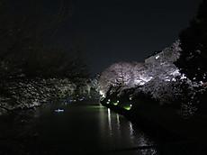 Chidorigafuchi02