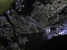 Chidorigafuchi05