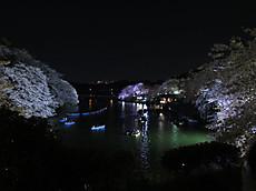 Chidorigafuchi06