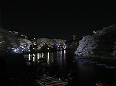 Chidorigafuchi08