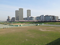 Tamagawa12