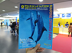 20140406sakura14