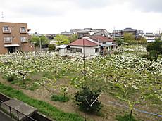 201404inagi01
