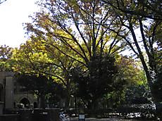 2014_15_2