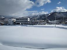 2015shibu03