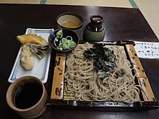 2015shibu36