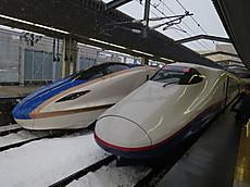 2015shibu39