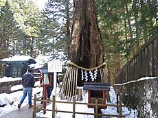 Nikkoyunisigawa10