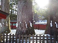 Nikkoyunisigawa13