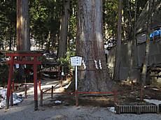 Nikkoyunisigawa14