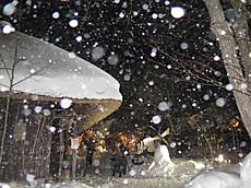 Nikkoyunisigawa36