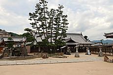 Itsukushima_15