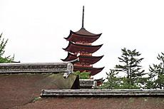 Itsukushima_23