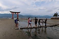 Itsukushima_8