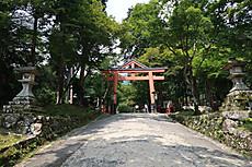 Hiyoshi_taga_1