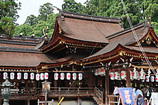 Hiyoshi_taga_14