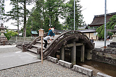 Hiyoshi_taga_21