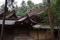 Hiyoshi_taga_22