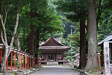 Hiyoshi_taga_3