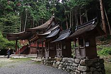 Hiyoshi_taga_6