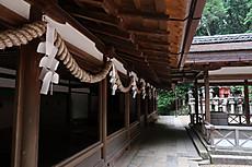 Izanagikasuga_15