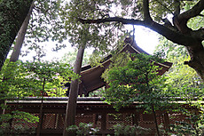 Izanagikasuga_32