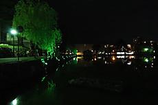 Izanagikasuga_5