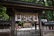 Suwa__5
