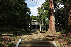 2017higanbana_25
