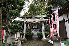 2017ayu_yana_39