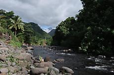 Tahiti050