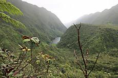 Tahiti086