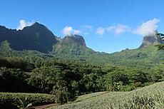 Tahiti097