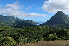 Tahiti101
