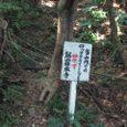 Nishikawana_51