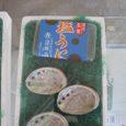Shidukawa114
