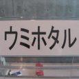 Shidukawa177