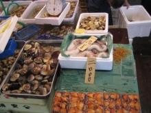 2005tsukiji_market-25