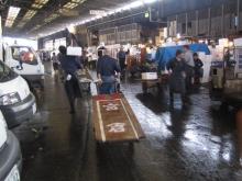 2005tsukiji_market-31