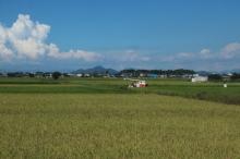 Biwakifuneohara25
