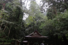Biwakifuneohara53