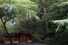 Biwakifuneohara54