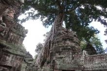 Cambodia-67