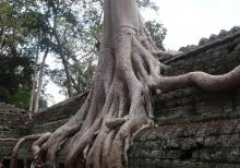 Cambodia-68